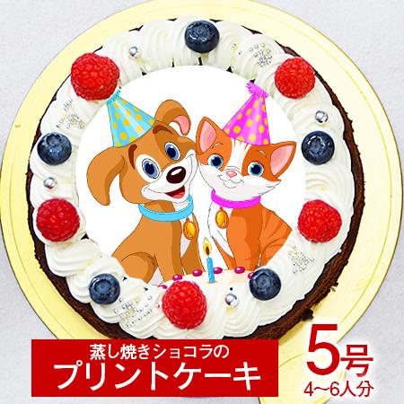 シェリーブランのオリジナル蒸しショコラ キャラクタープリントケーキ5号サイズ直径15cm≪4~6名用サイズ≫ベルギー産チョコのキャラクタープリントケーキ