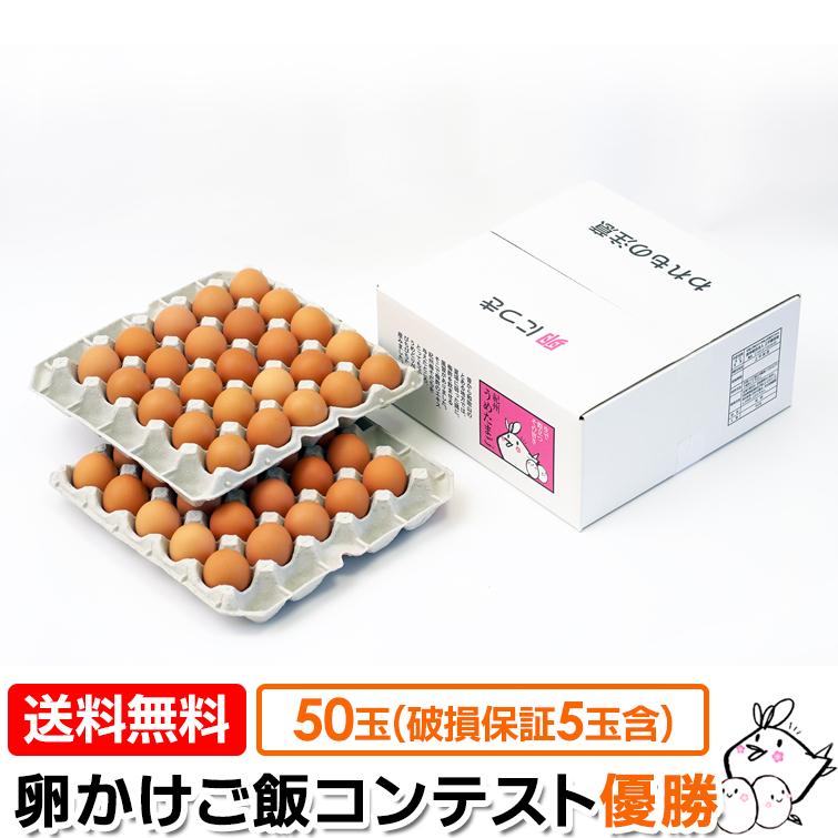 めざましテレビで紹介されました 美味しい卵かけごはん を食べたい人へ 日経ウーマンオンライン 全国卵掛けご飯コンテスト優勝 贈り物にも たまご 送料無料 紀州 うめたまご 50玉 鶏卵 45玉 うめどり 卵 内 卵掛けごはん ギフト プレゼント 高品質新品 ご褒美 卵かけごはん専用 破損保証5玉含む 玉子