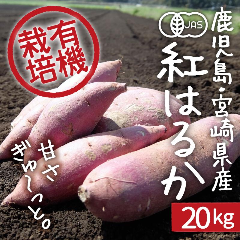 さつまいも 紅はるか 20kg 送料無料 有機栽培 鹿児島県産 宮崎県産 業務用 さつま芋 サツマイモ organic オーガニック 新もの