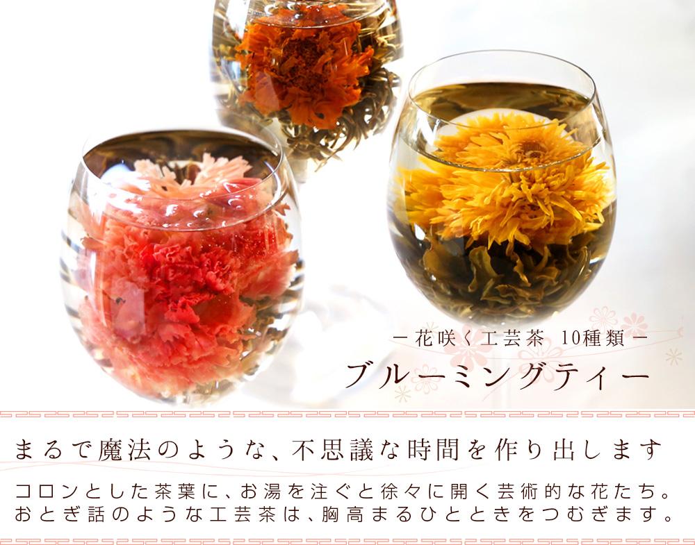 母の日 カーネーション 花 咲く工芸茶10種 詰め合わせ セット ギフト用 プリザーブドフラワーやハーバリウムのようにおしゃれ 誕生日プレゼント バースデー サプライズ ジャスミン茶 メール便