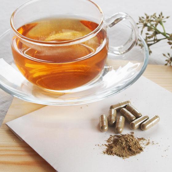 キャンドルブッシュ 卓抜 ゴールデンキャンドル プーアル茶 ルイボスティー スッキリでるでる茶サプリメント90粒 サプリメント済 サプリ 早割クーポン ハブ茶