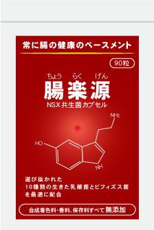 腸楽源NSXカプセル 90粒/袋乳酸菌・ビフィズス菌、NSX共生菌腸内環境の改善、腸脳の健康管理