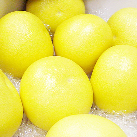 ★ ◆ top quality! Greenhouse Tosa Buntan (とさぶんたん) about 3 kg and ball 5-6 balls ★ ( please reserve items ) * cod +210 Yen is required