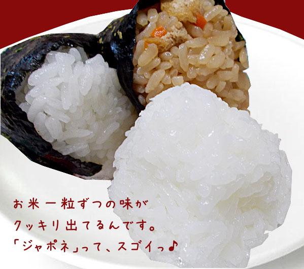 "Rice メトレフランセ 'Japon steamer ( JAPONAIS )"""