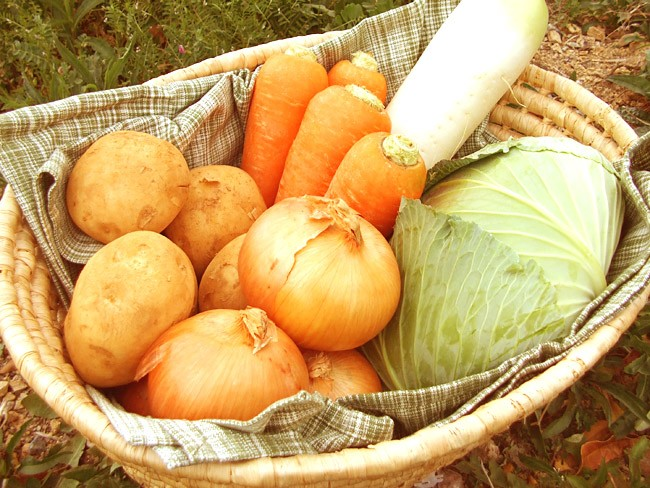 """★ domestic """"lots of vegetables"""" 5 items set ★ [collection] ( ships on Tuesday, Thursday and Saturday )"""