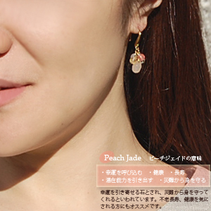 Natural stone drop earrings 10P13oct13_bKT
