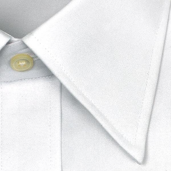 棉100%、形态稳定加工、标准身体、长袖子.2种安排·礼服用恤衫白绒面呢·常规彩色、CHOYA衬衫(衬衫·Y衬衫·商务衬衫.50%OFF、SALE、促销)(cxd100-1)