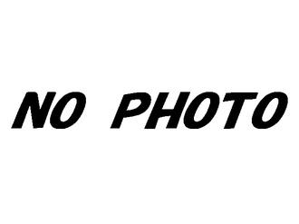 ステップワゴン RK5~7 グレード スパーダ 前期 リアディフューザー ヴァリアント ガレージベリー