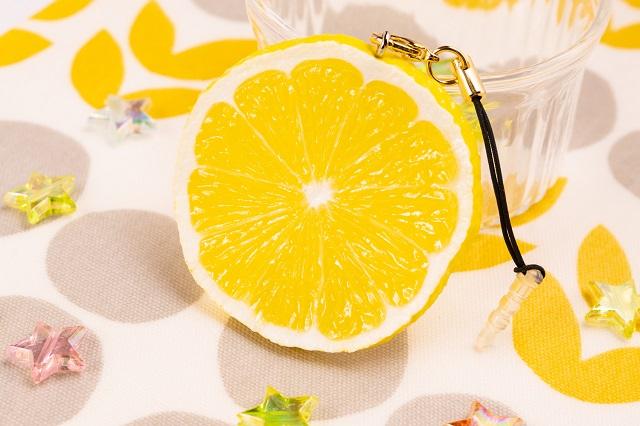 メール便200円での発送可能 イヤホンジャック スマホ スマートフォン対応 結婚祝い フルーツ グッズ ハンドメイド 食品サンプル 贈与 レモンスライス