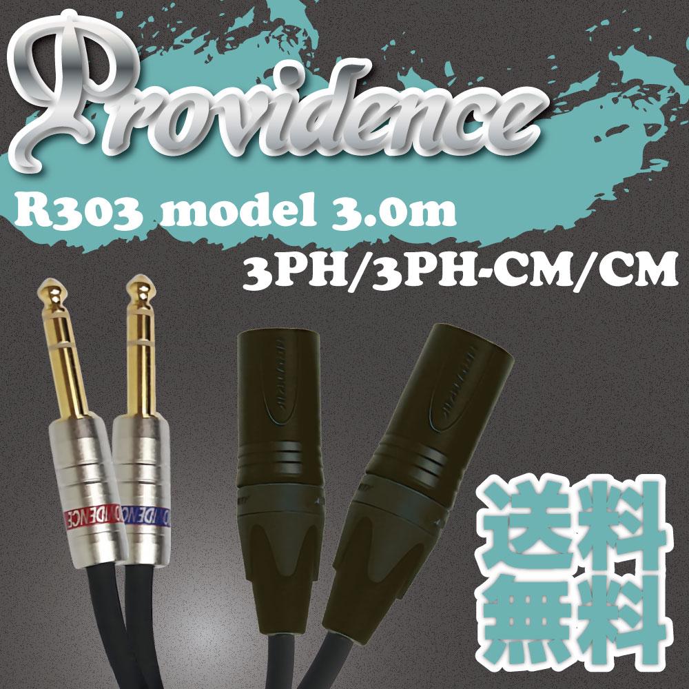 Providence R303 3PH/3PH-CM/CM 3m ラインケーブル