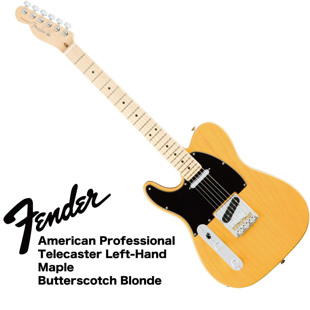 Fender American Professional Telecaster Left-Hand MN BTB ASH レフティ エレキギター