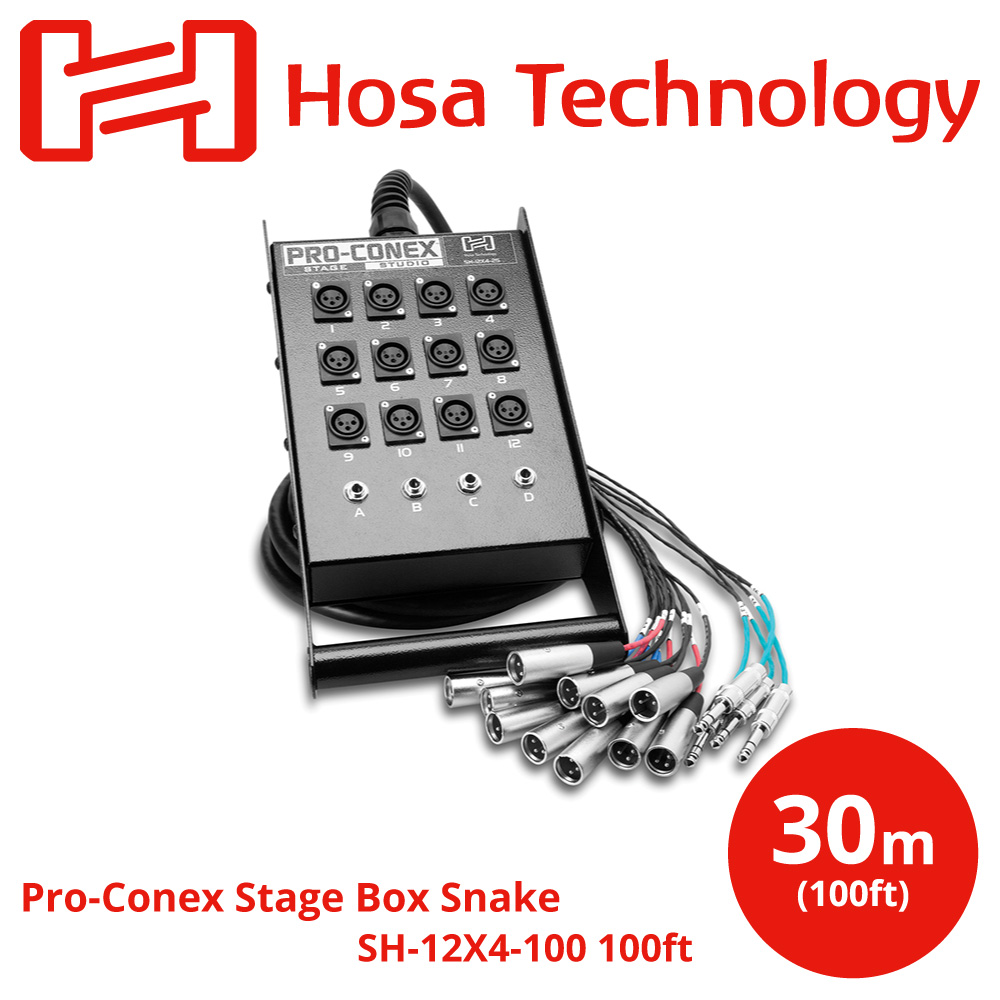 Hosa SH-12X4-100 30m 一体型ライブ用マルチケーブル アウトレット