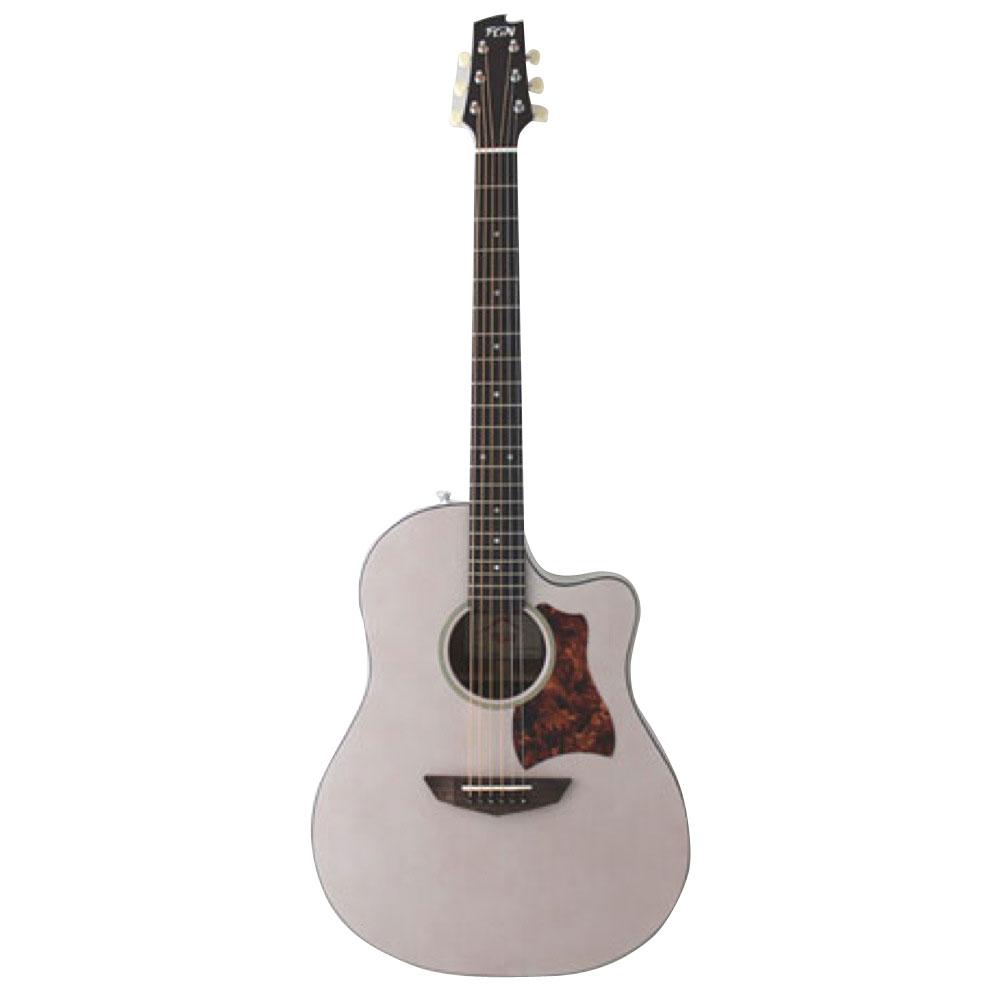 FUJIGEN AG1 TWF アコースティックギター