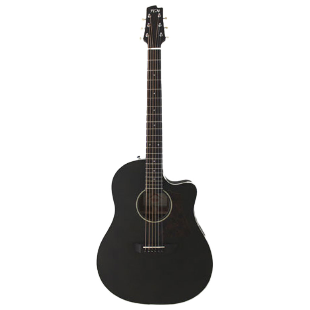 FUJIGEN AG1 TBF アコースティックギター