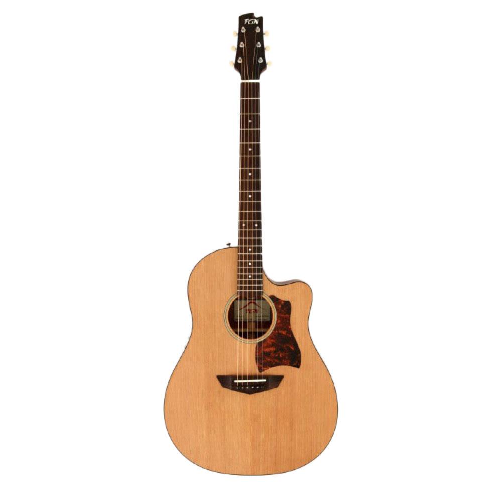 FUJIGEN AG2E NTF エレアコギター