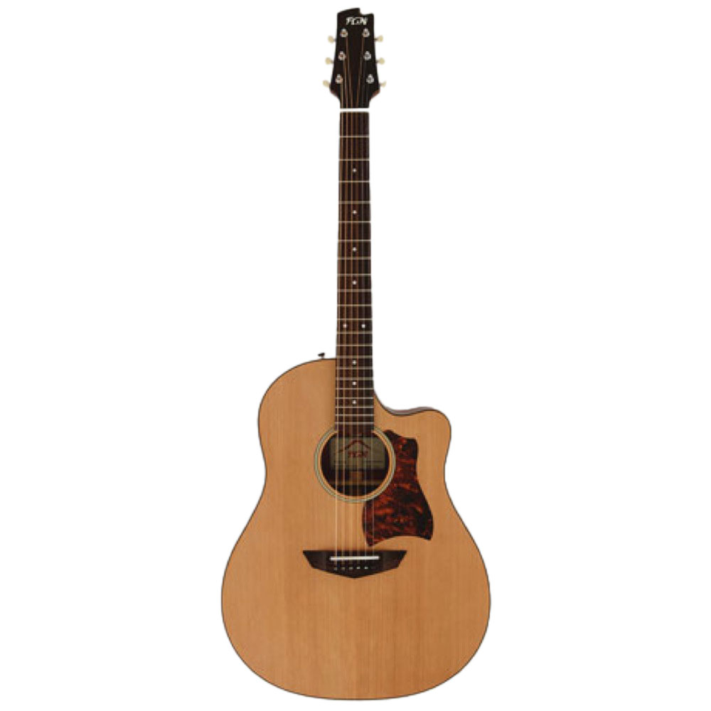 FUJIGEN AG1 NTF アコースティックギター