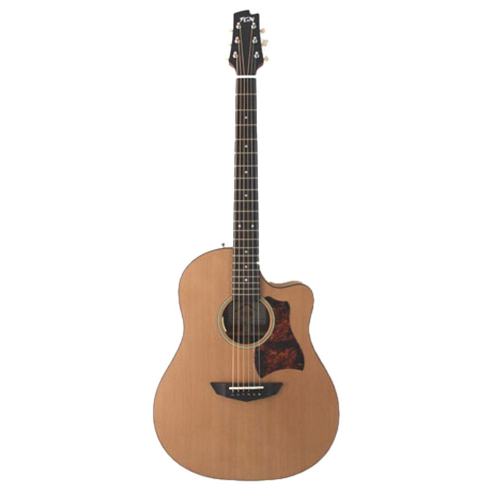 FUJIGEN AG1E NTF エレアコギター