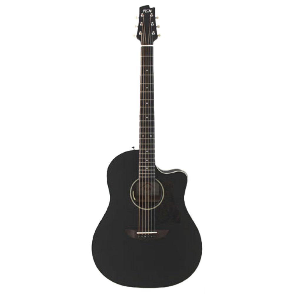 FUJIGEN AG1E TBF エレアコギター