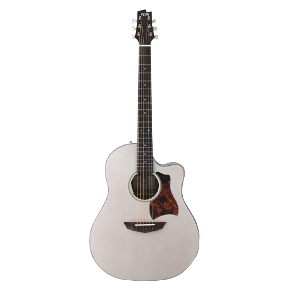 FUJIGEN AG1E TWF エレアコギター