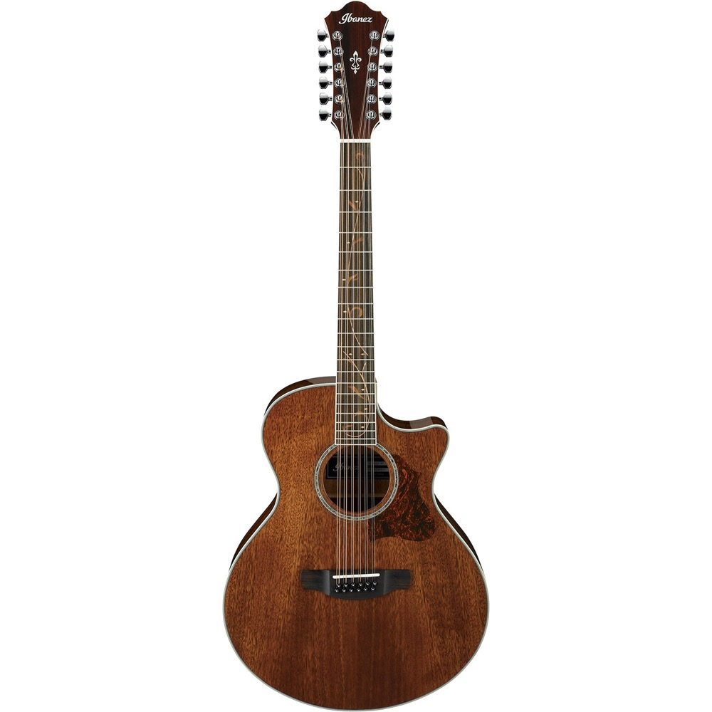 IBANEZ AE2412-NT 12弦エレクトリックアコースティックギター