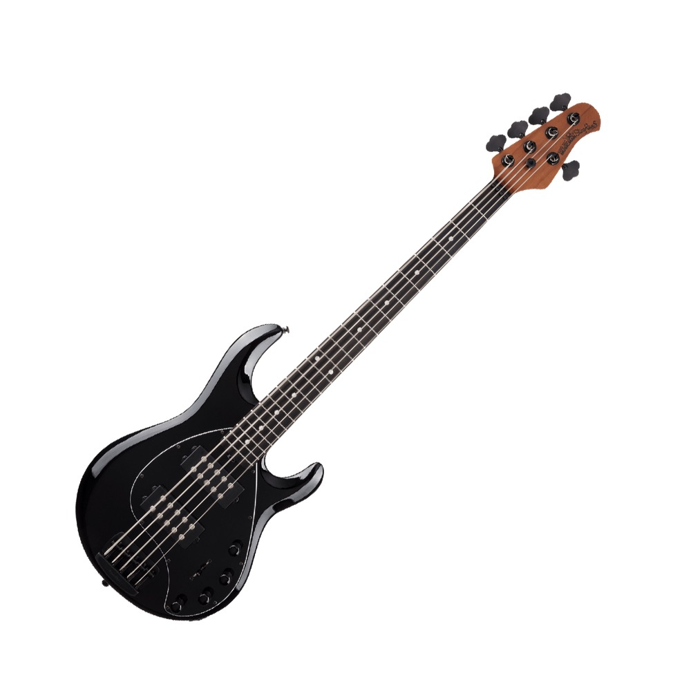 MUSIC MAN StingRay5 Special HH Roasted Maple w/Ebony Jet Black 5弦エレキベース