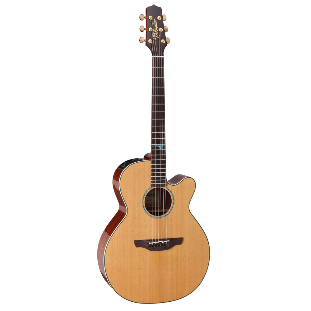 タカミネ ワールドスタンダードシリーズ 日本未発売 ストア 専用ハードケース付 TAKAMINE エレクトリックアコースティックギター ESF40C