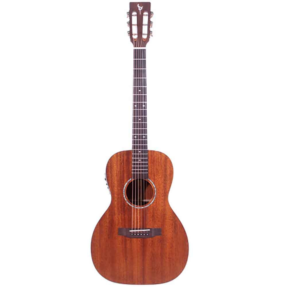 DCT F-200 E エレクトリックアコースティックギター