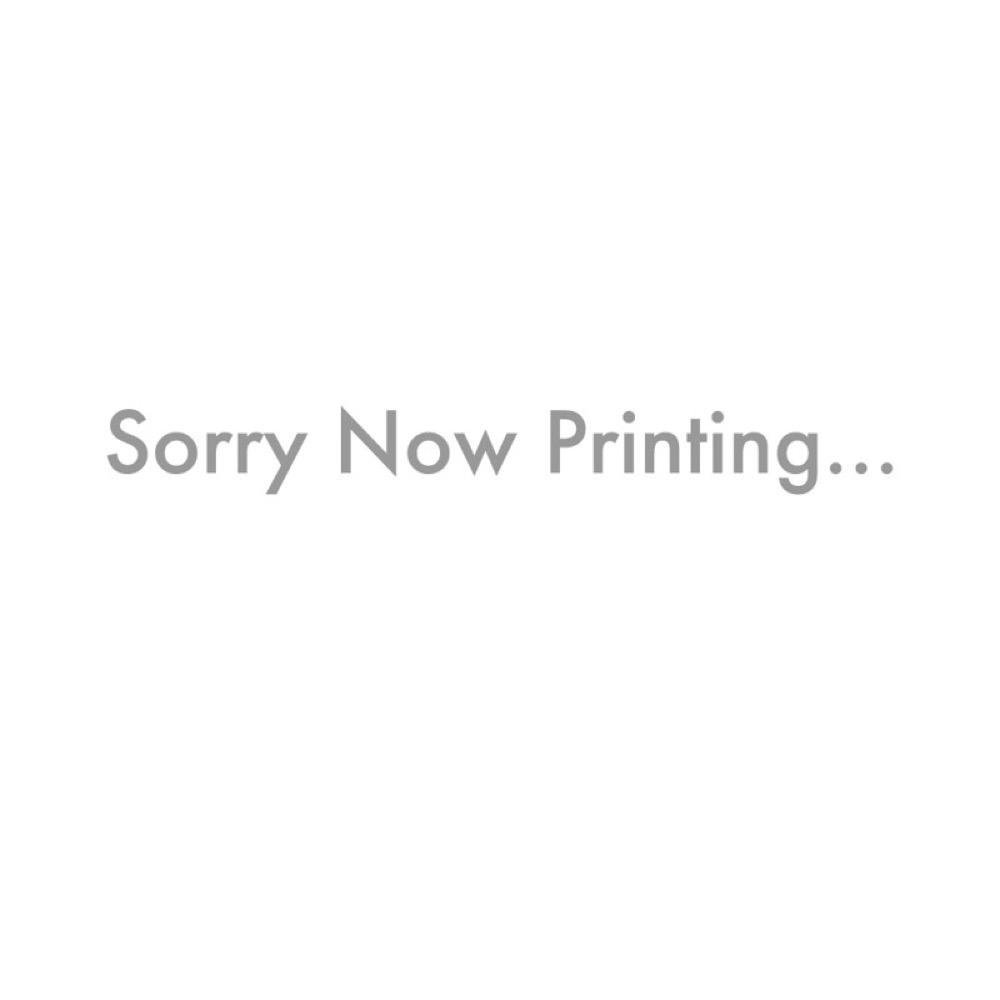 SCHALLER LP-GO Stud & Insert x2 レスポール用トレモロパーツ スタッド インサート 2セット