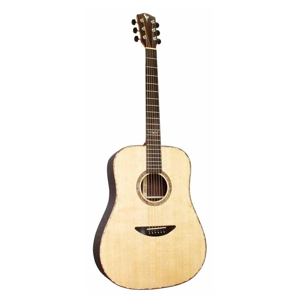 DCT D-721 SP アコースティックギター