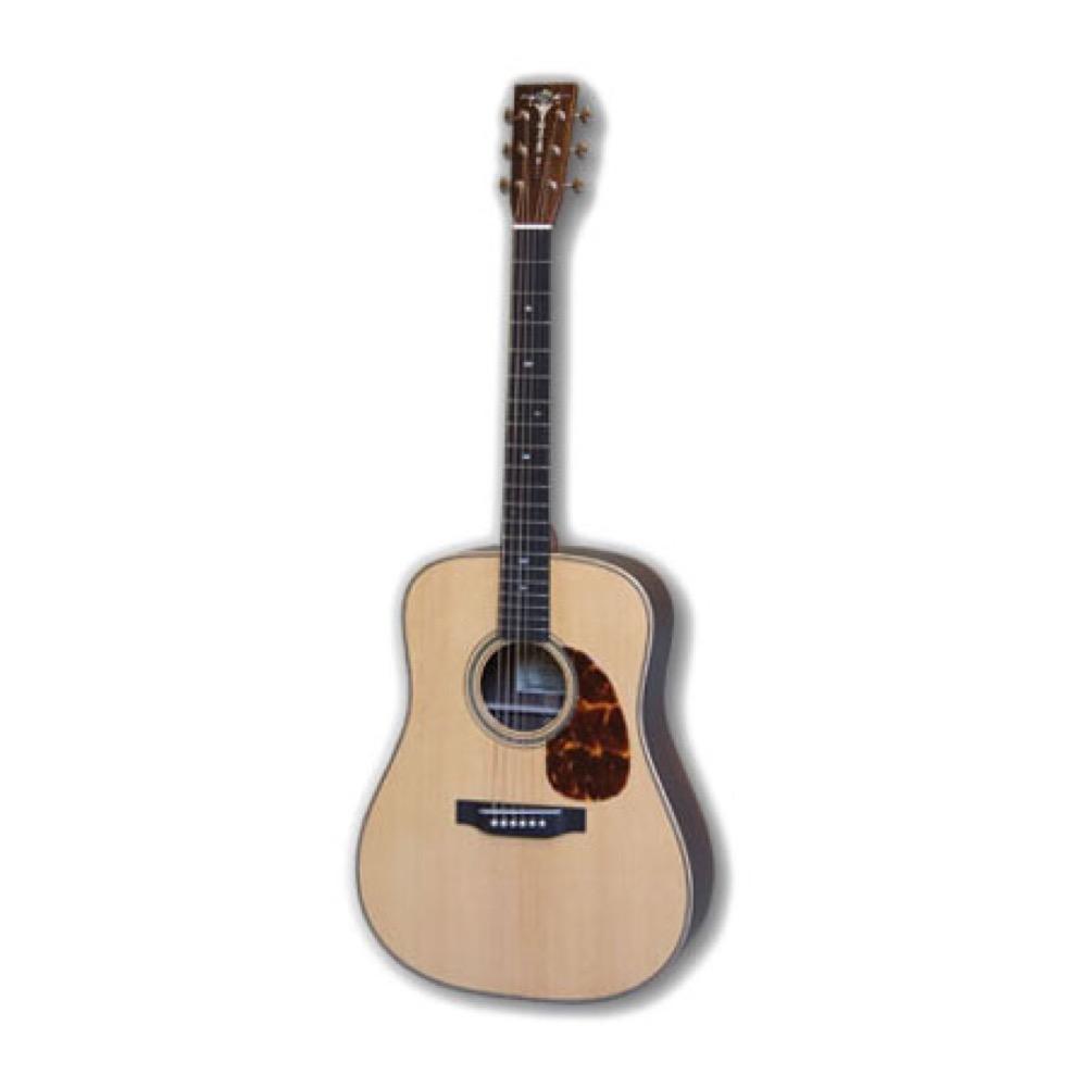 ASTURIAS D CUSTOM アコースティックギター セミハードケース付き