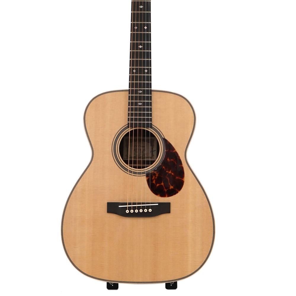 ASTURIAS EC CUSTOM アコースティックギター セミハードケース付き
