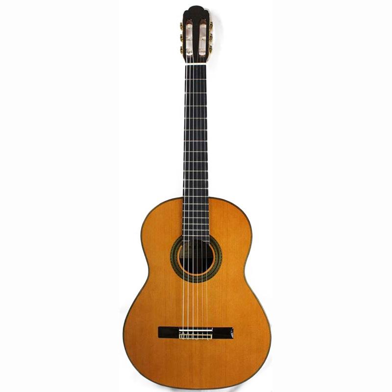 ARIA A-100C クラシックギター ハードケース付き