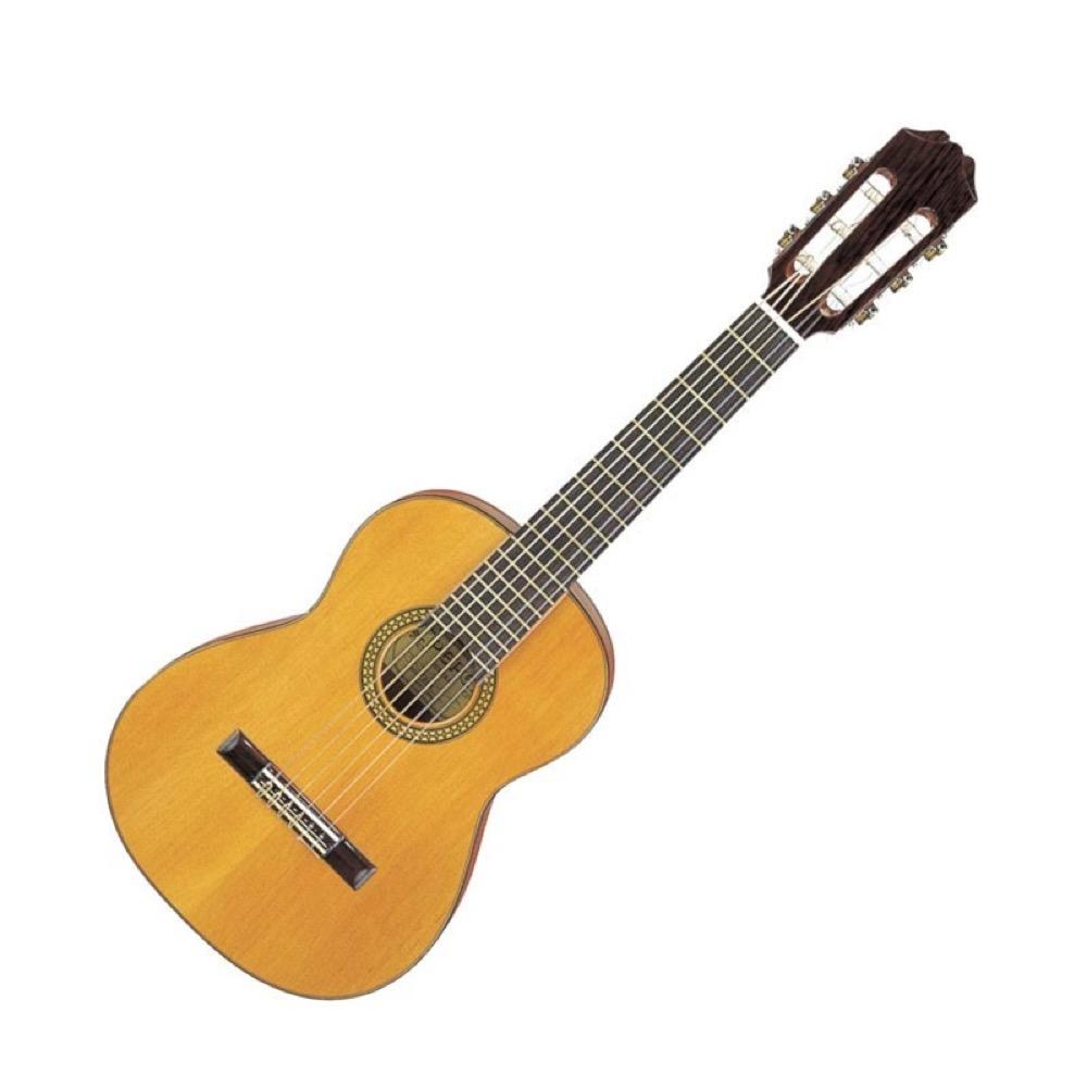 PEPE PS-48 ミニギター