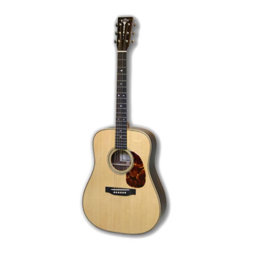 ASTURIAS D PREWAR アコースティックギター セミハードケース付き