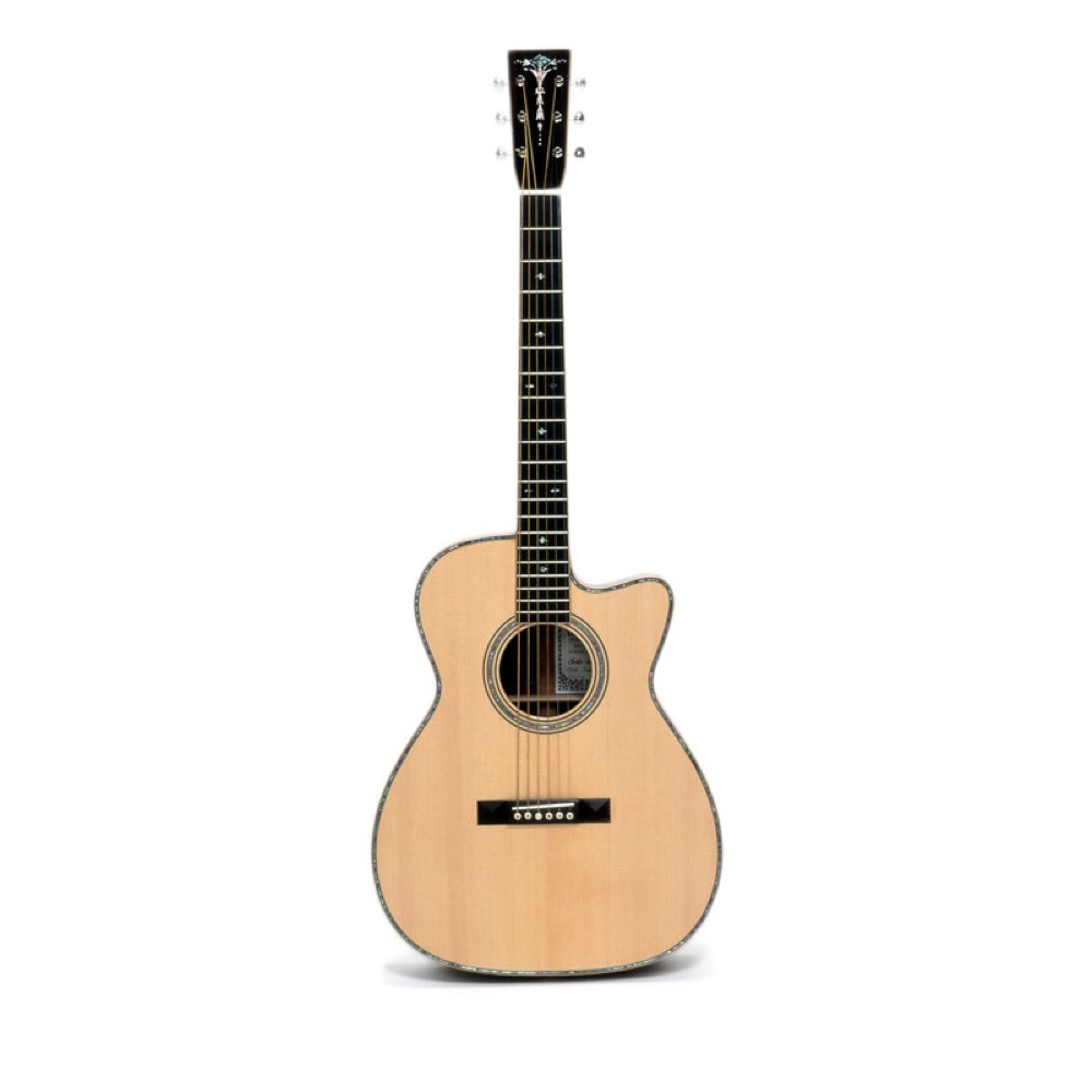 ASTURIAS SOLO PREMIUM アコースティックギター セミハードケース付き