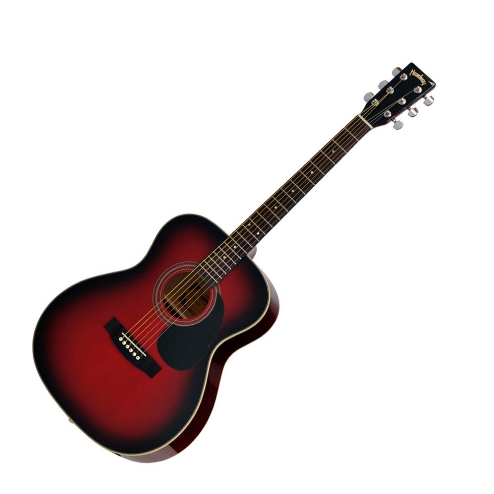 HEADWAY HF-25 TRS アコースティックギター