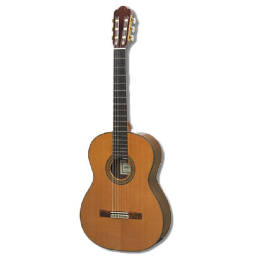 ASTURIAS CUSTOM C 650mmスケールタイプ クラシックギター