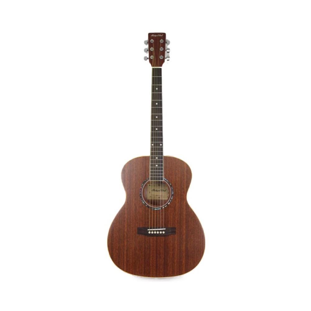 ANTIQUE NOEL AOM-1 アコースティックギター