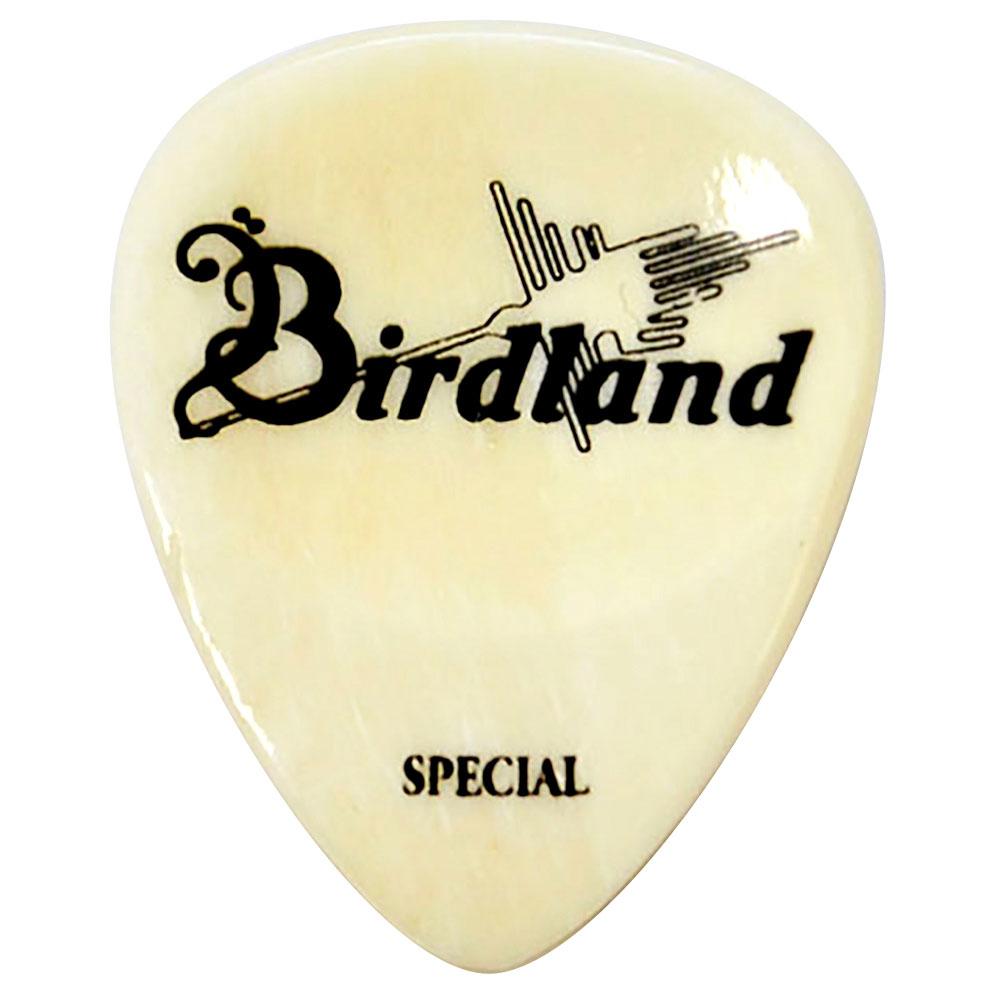 バードランド 激安挑戦中 ギター ベース用ピック ティアドロップ Birdland Buffalo Special 値引き Pick Bone ギターピック×2枚