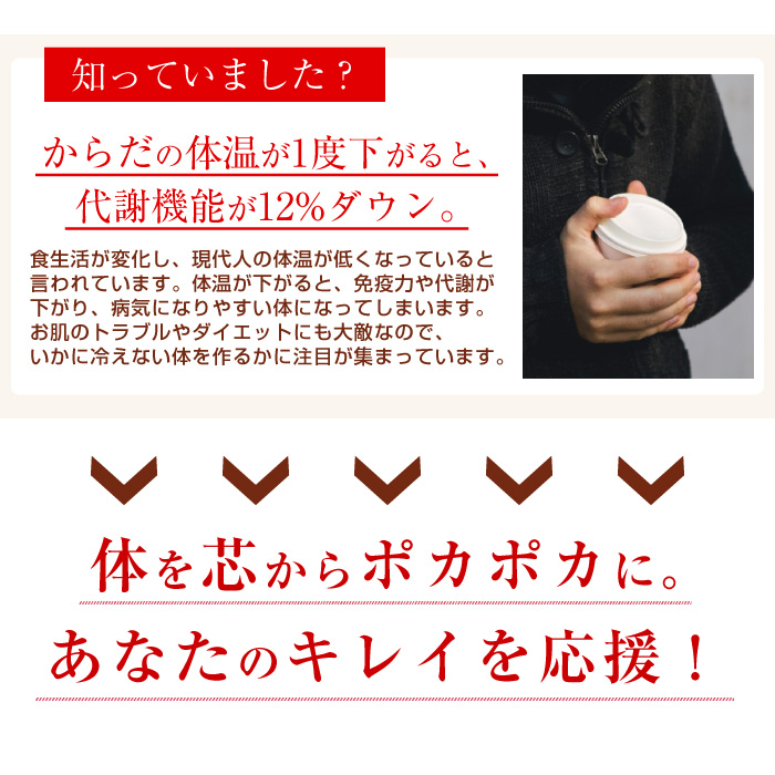 しょうがパウダー 生姜パウダー 乾燥ショウガ 無添加 乾燥生姜 ジンジャーパウダー 温活 冷え対策