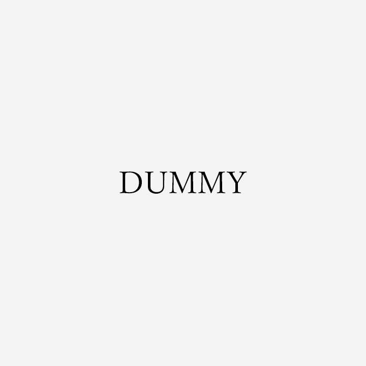 この商品名はダミーです。