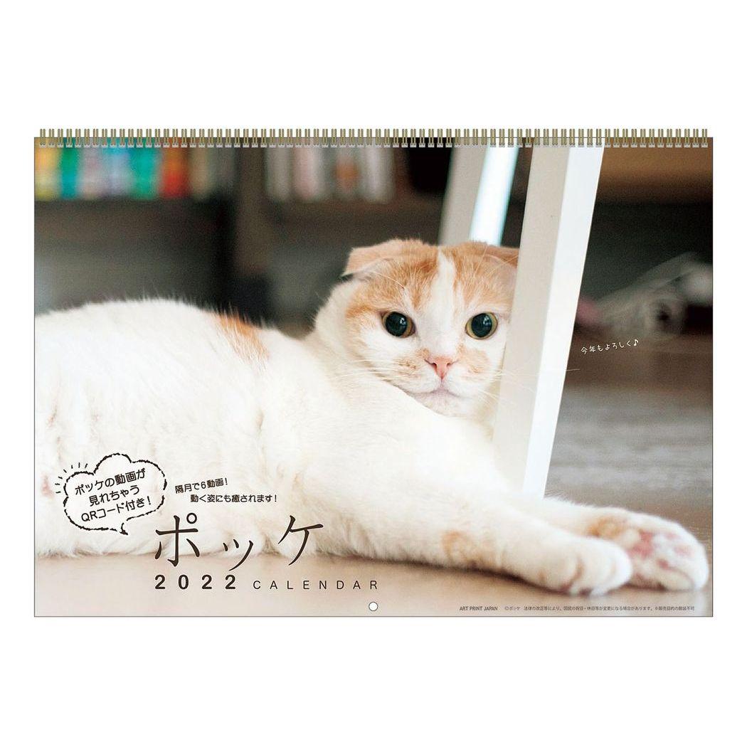 猫 ポッケ 2022年 カレンダー 壁掛け スケジュール ねこ キャット APJ 国際ブランド 令和4年 かわいい シネマコレクション 美品 暦 あす楽シネマコレクション 写真 動物 書き込み