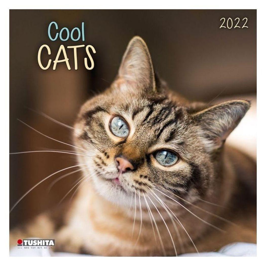 2022年 カレンダー 壁掛け COOL CATS クールキャット 猫 TUSHITA アニマル 写真 インテリア 令和4年暦  シネマコレクション 壁掛け 2022年 カレンダー COOL CATS クールキャット 猫 TUSHITA アニマル 写真 インテリア 令和4年暦 シネマコレクション