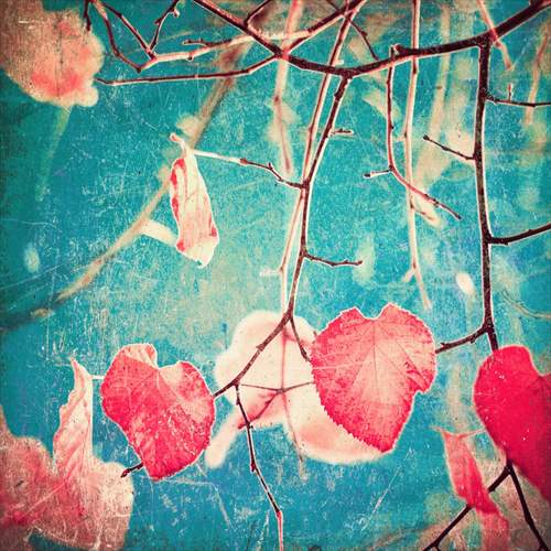 【取寄品】【送料無料】Autumn pink heart leafs on blue textured sky インテリアパネル パネルフレーム IAP51594 キャンバス モダンアート 600×600mm お洒落インテリア通販
