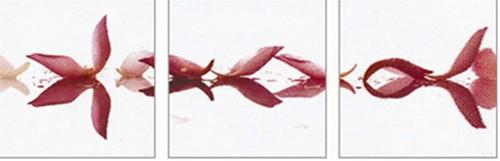 【取寄品】【送料無料】ペーパーアートパネル IND-12483 3枚セット 額付インテリアアート通販2/21朝10時まで