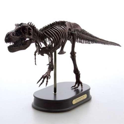 【取寄品】【送料無料】ティラノサウルス ブラウン 最高峰 スケルトンモデル 恐竜グッズ 骨格フィギュア 通販 夏休み 自由研究 理科