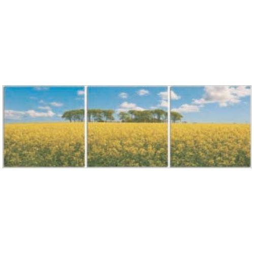 NEW DESIGN Concept Frame インテリア アート アートパネル 3枚セット 菜の花畑 美工社 ウォールアート 壁掛け 額付きおしゃれ通販 【取寄品】 【送料無料】シネマコレクション