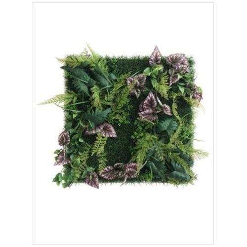 Wall Plants frame インテリア アート インダストリアルスタイル シダ&ベゴニア ホワイトフレーム 美工社 62.5×62.5cm 壁掛け 額付き グッズ 通販 【取寄品】 【送料無料】シネマコレクション