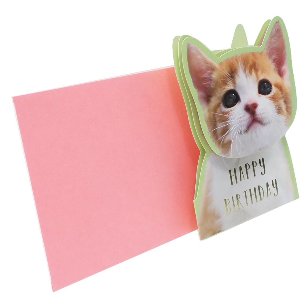 Pretty Goods Mail Order Cinema Collection With The Birthday Card Tea Thoracat Active Corporation Happy Envelope That A Dog Cat Greeting Face