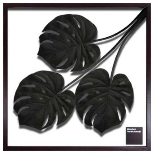 F-style Frame リーフアートフレーム Monstera Deliciosa / Black モンステラ デリシオサ ブラック 美工社 62.5×62.5×3cm 造花 額付きインテリア通販 取寄品 シネマコレクション